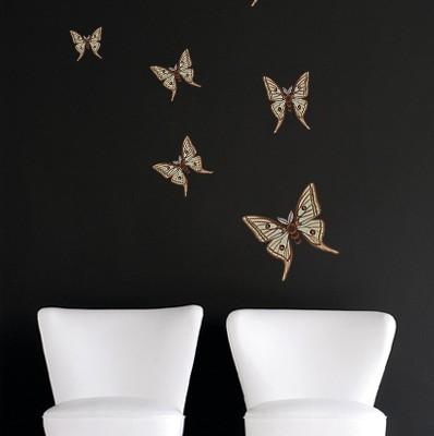 farfalla beige