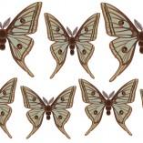 Farfalla4-tutte